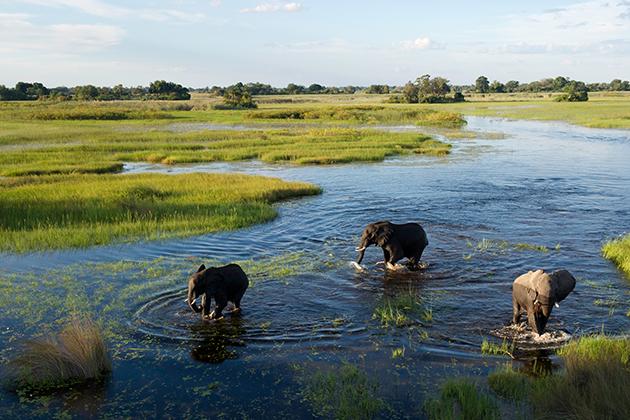 Botswana-630px-420px.jpg