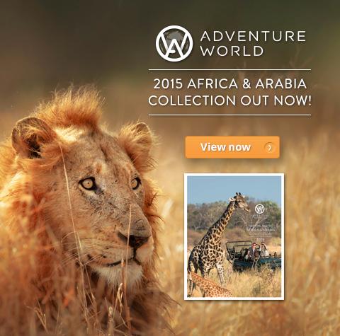 2015 Africa & Arabia