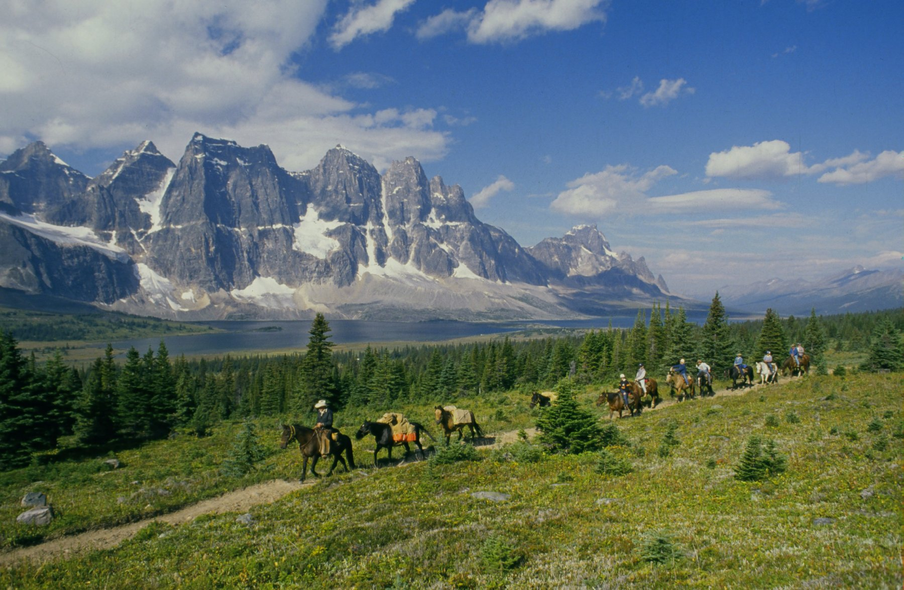 Alberta's Backcountry by Horseback